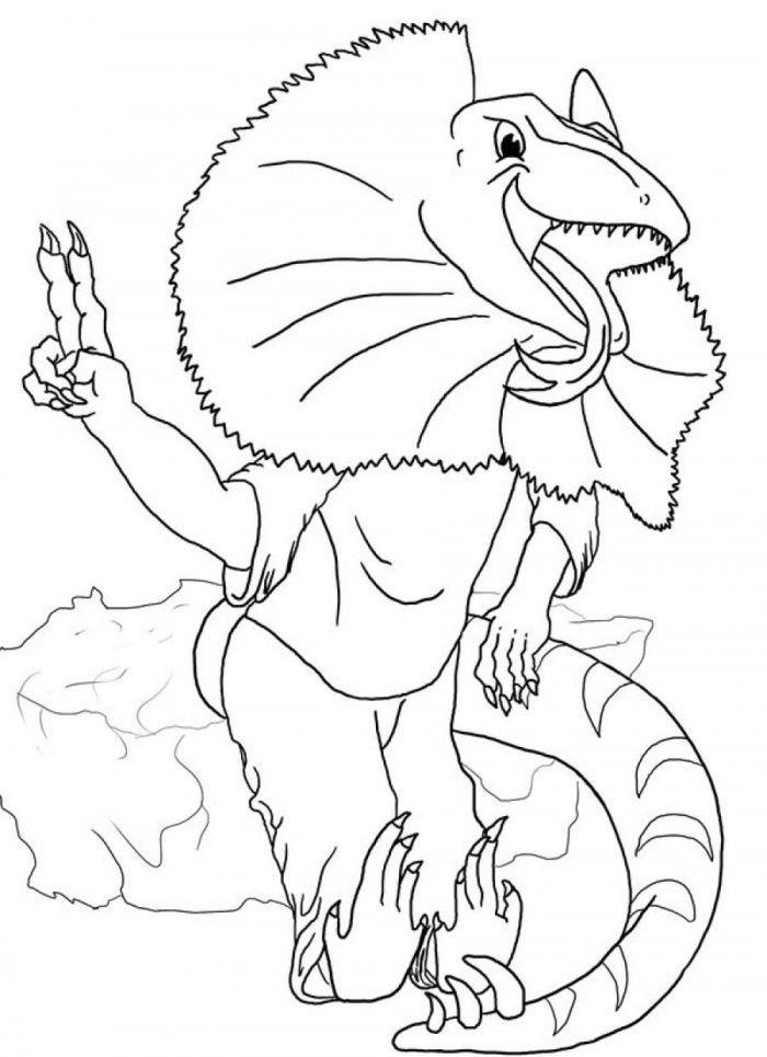 frilled lizard coloring pages coloring