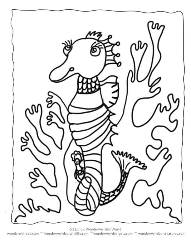 and seahorses Colouring Pages (page 3)