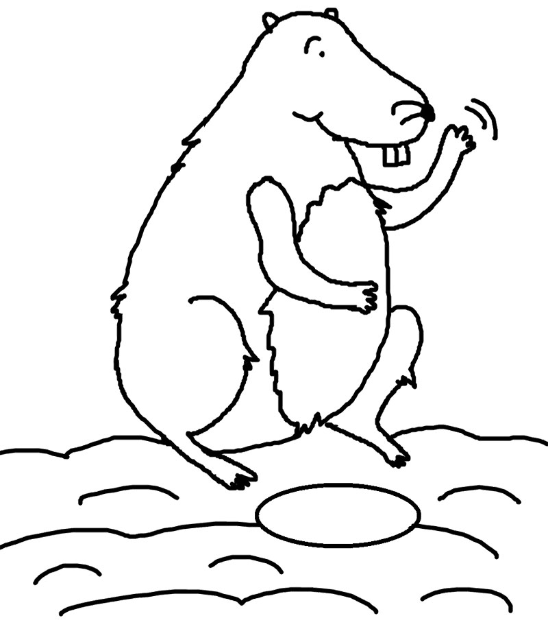 Groundhog Day Coloring Pages Kids Az Coloring Pages Ground Hog Coloring Page