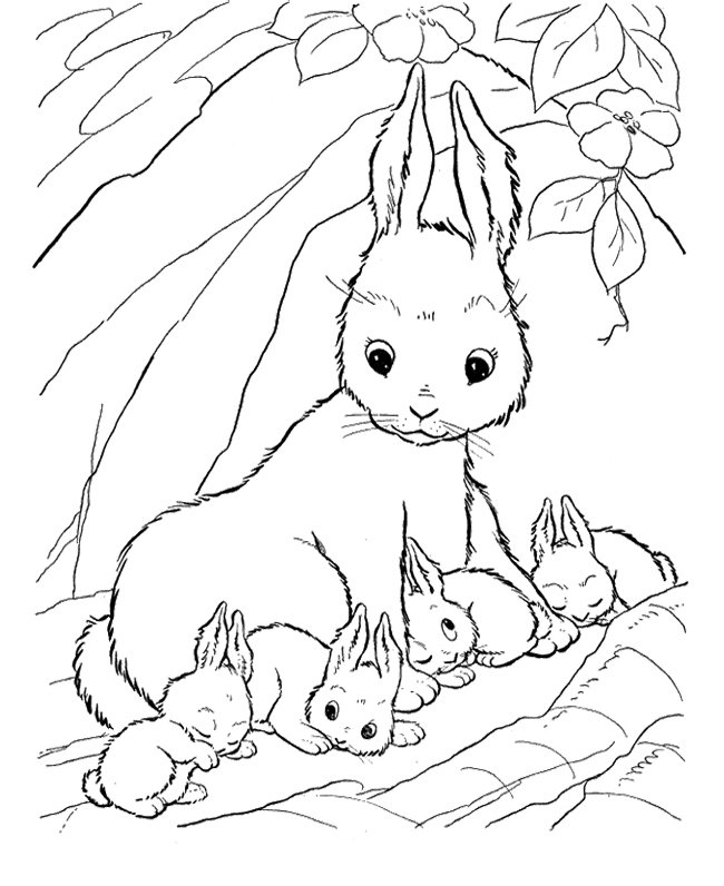 Velveteen Rabbit And Coloring Pages