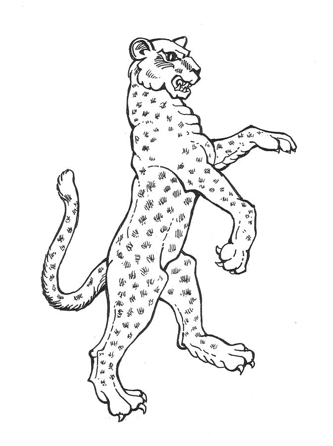 Leopard by david burkart leopard drawing leopard fine for Fine art coloring pages