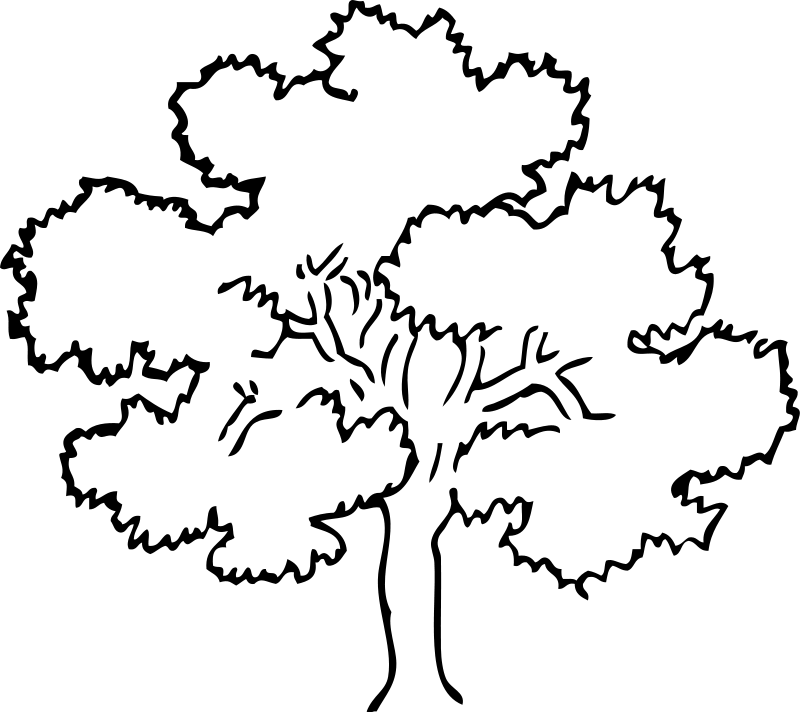 Tree Print Out Az Coloring Pages Tree Coloring Page Print Out