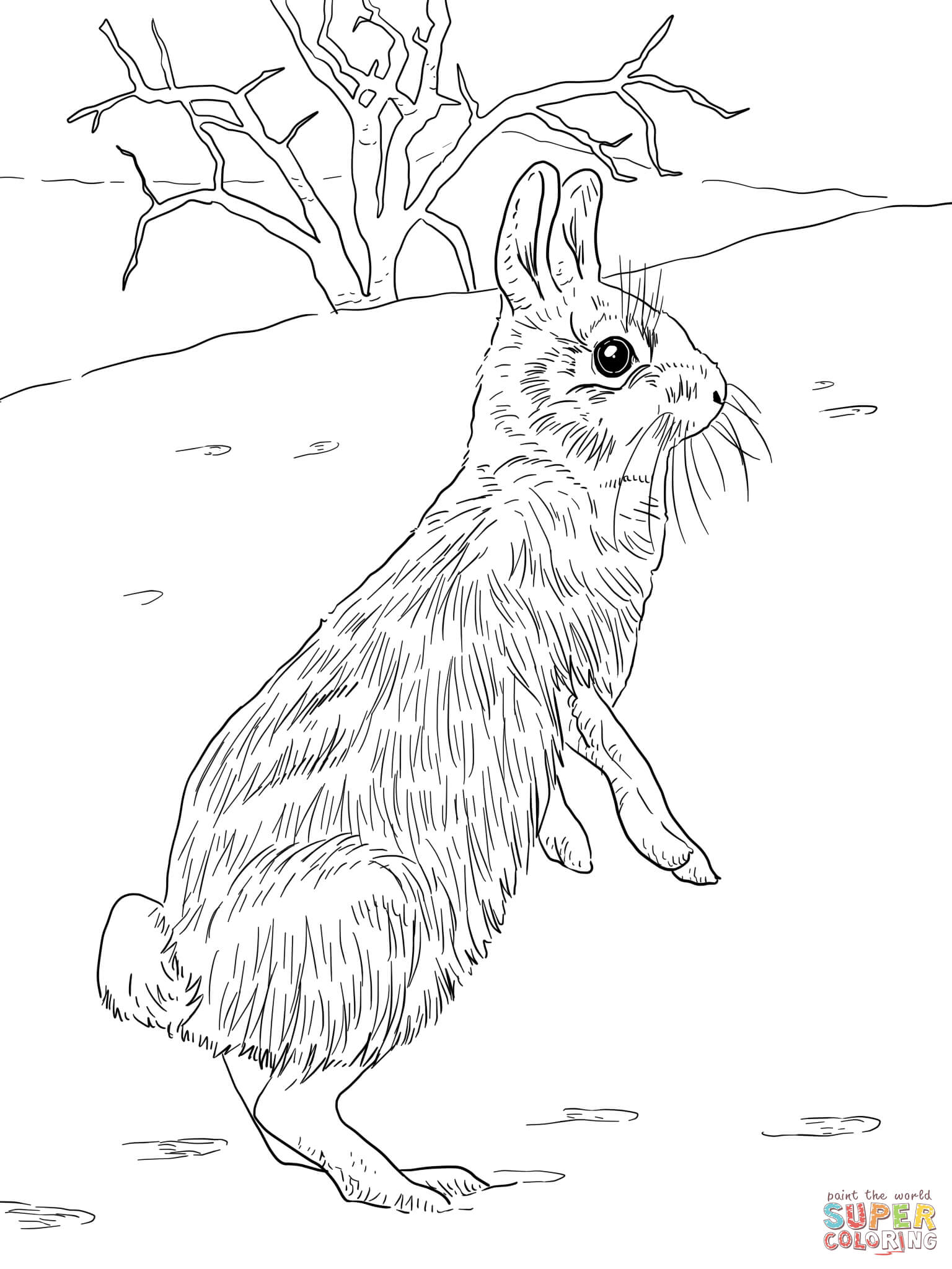 Peter Cottontail Printable Coloring
