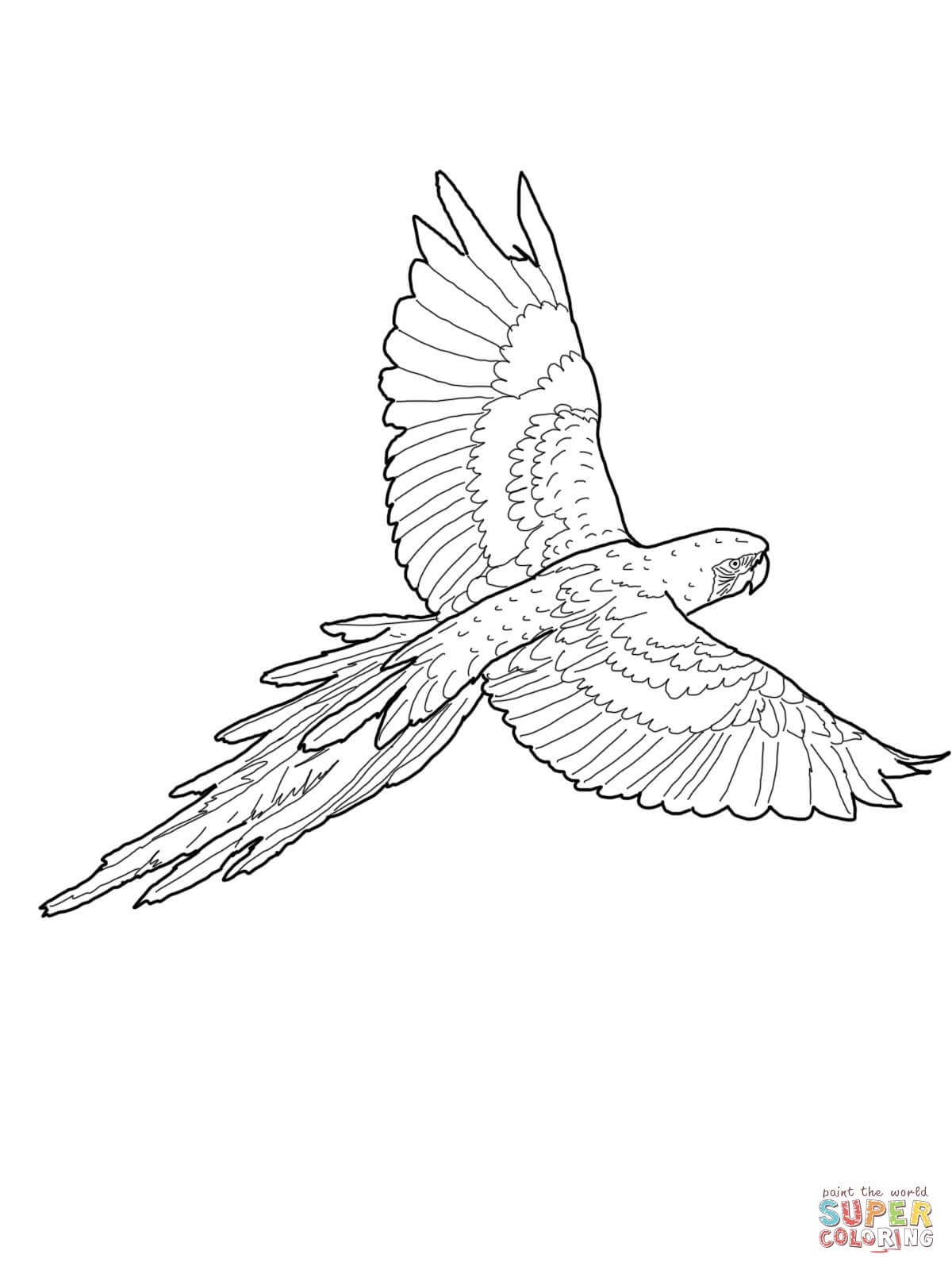 Jamaican Coloring Pages Coloring