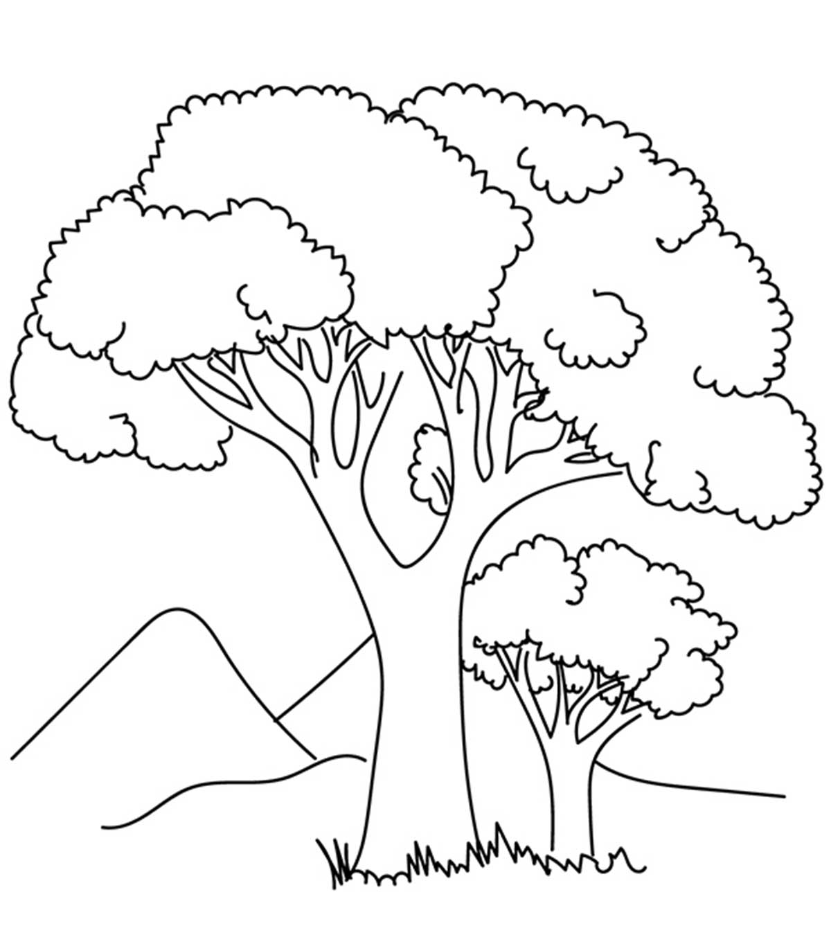 Tree Of Life Coloring Pages - Coloring Home