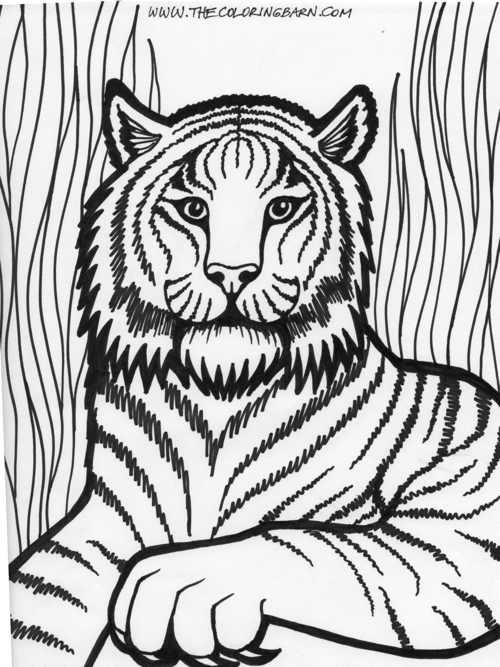 a lion with little lions coloring pages coloring home