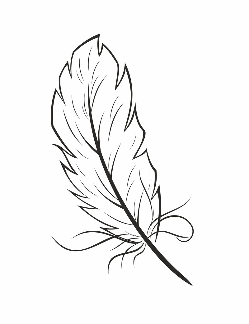 feathers coloring page coloring home