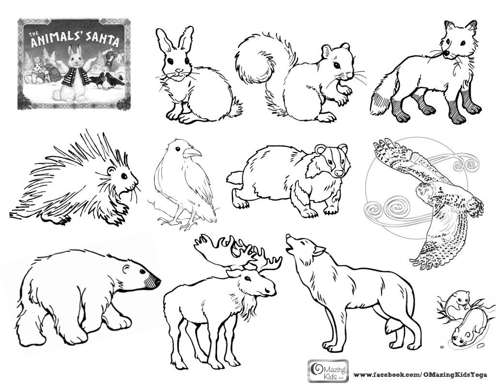 Free Printable Arctic Animals Coloring Pages - Coloring Home
