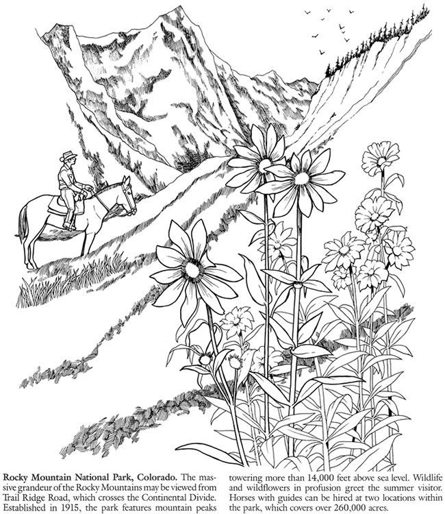 8 Pics Of Rocky Mountain Elk Coloring Page - Free Printable Elk ...