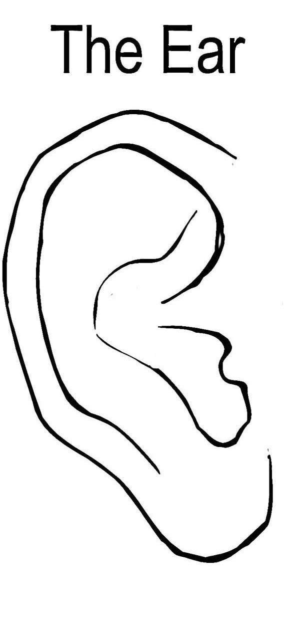Pair Of Ear Coloring Pages Kids Play