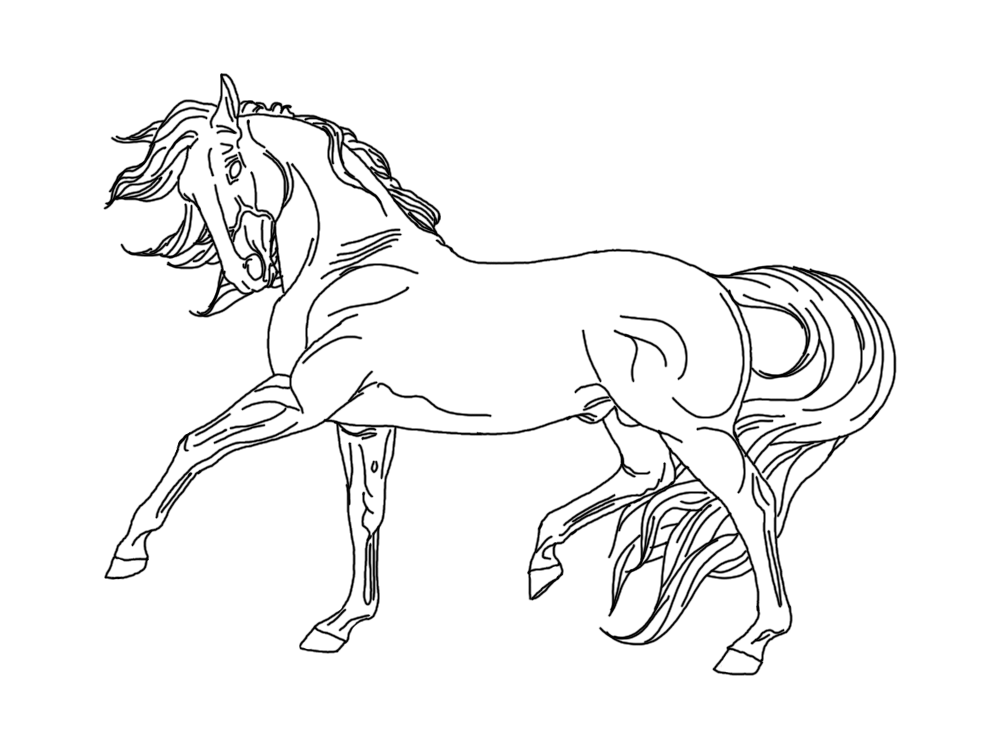 breyer horse coloring pages printable - photo#4