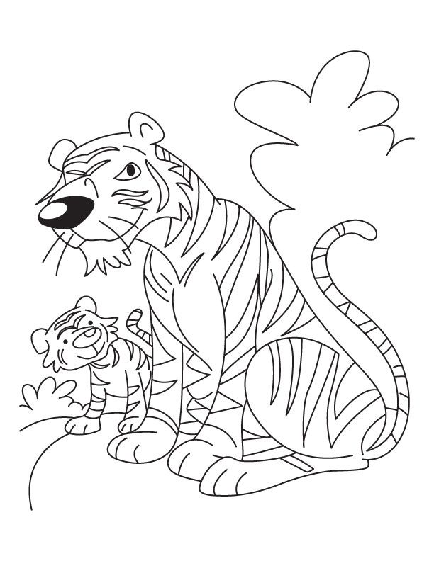 Baby tiger coloring pages coloring home for Coloring pages tiger cubs