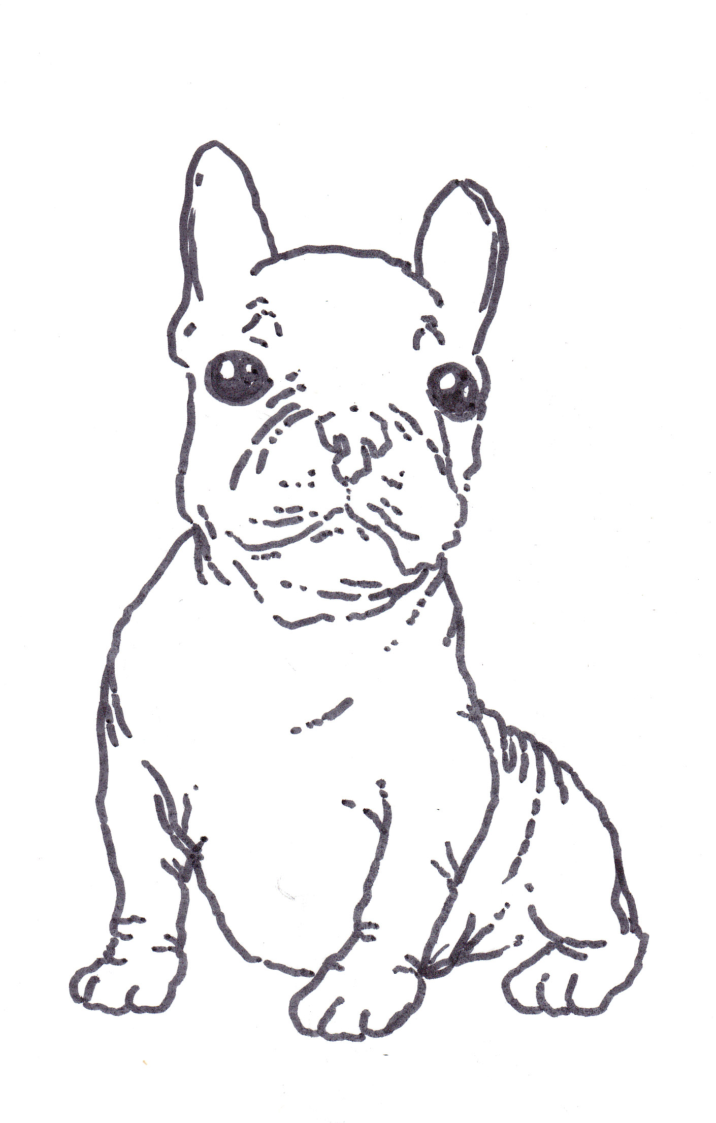 French Bulldog Coloring Pages