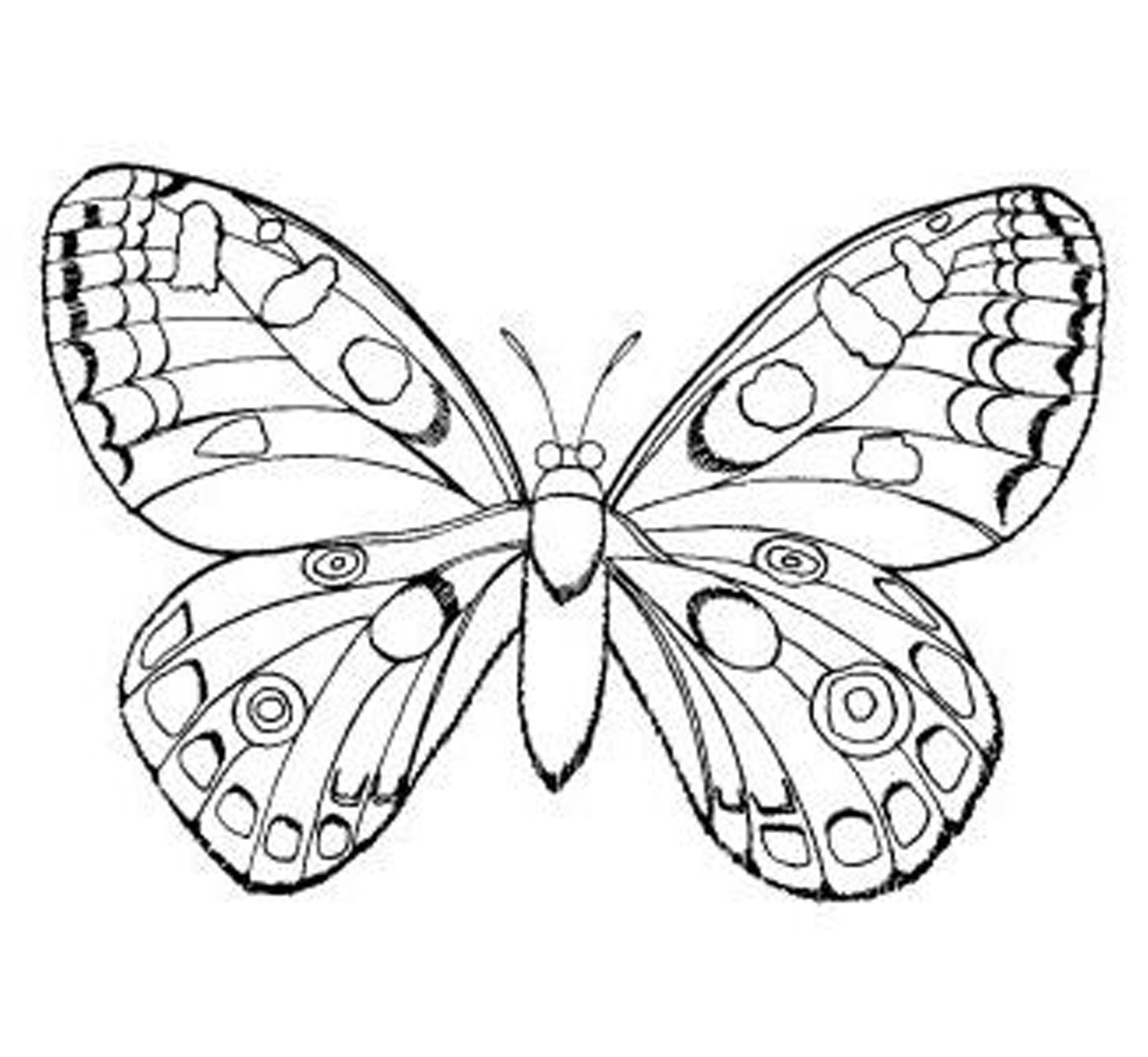 Colouring in pages for girls butterflies - Free Coloring Pages Easy Coloring Pages Free Coloring Pages For Girls Excellent Easy