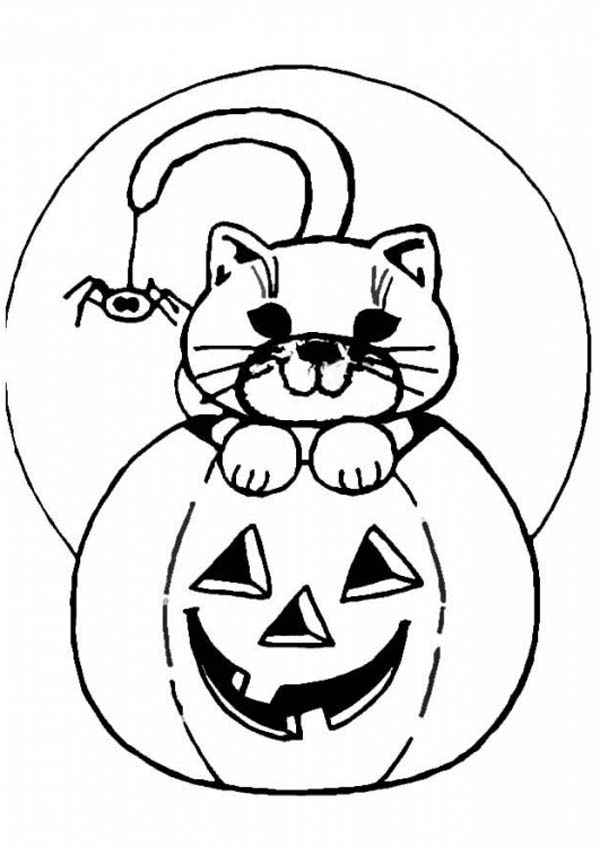 Jackolantern Coloring Pages Coloring