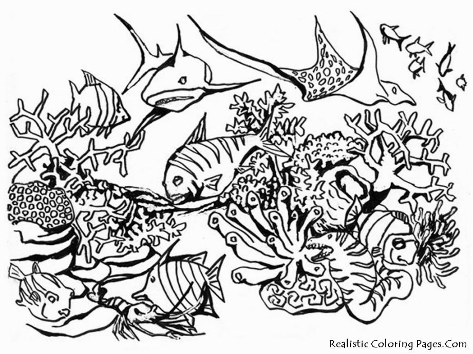 ocean scenes coloring pages - photo#14