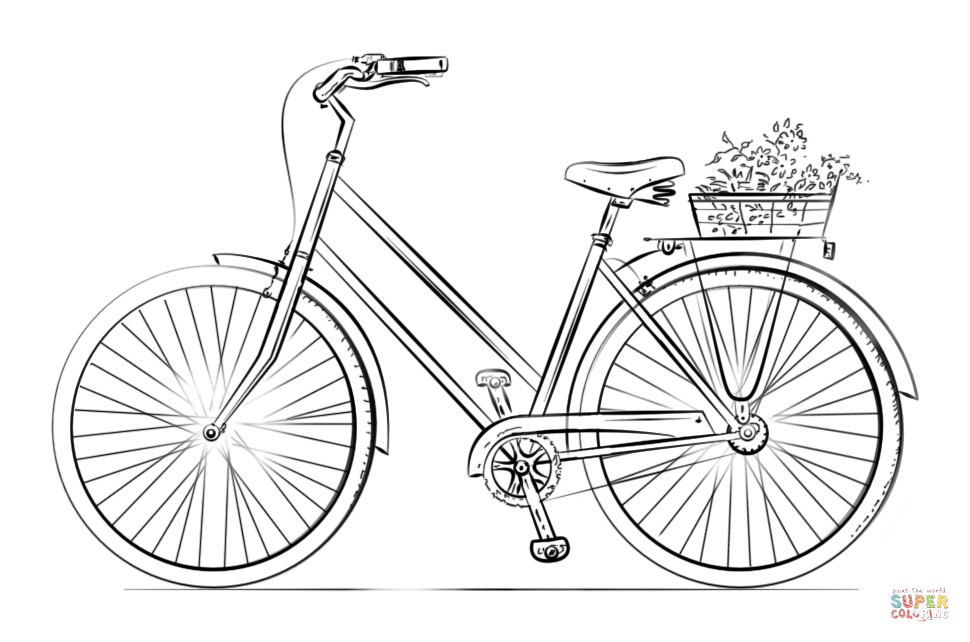 Bicycle With Flower Basket Coloring Page Free Printable Coloring