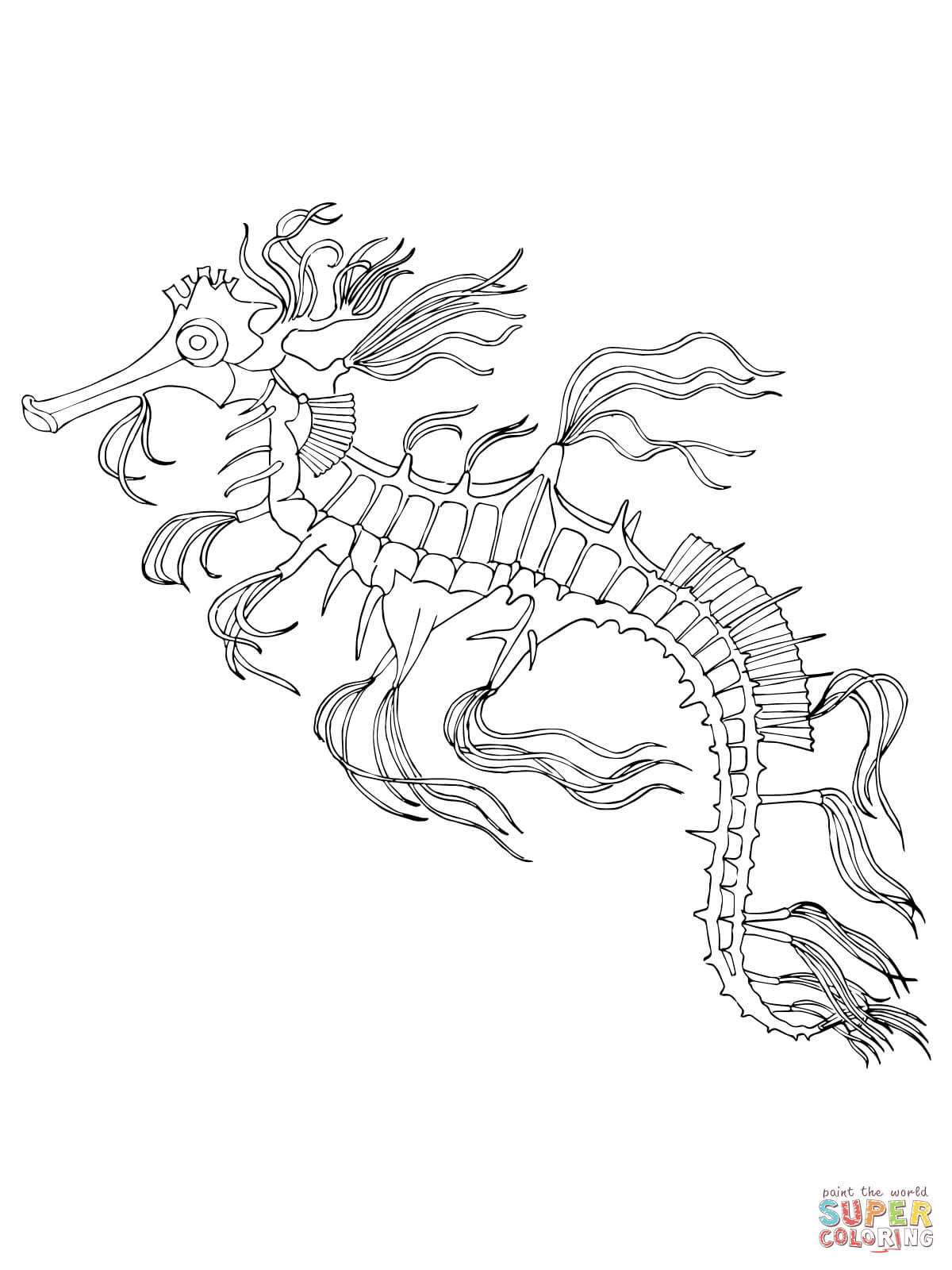 Seahorse Adult Coloring Pages - Coloring Home