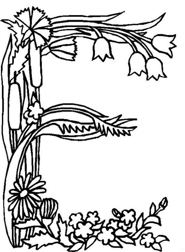 the letter e coloring pages