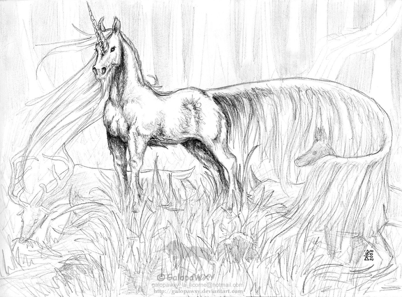 7 pics of realistic pegasus coloring pages pegasus coloring
