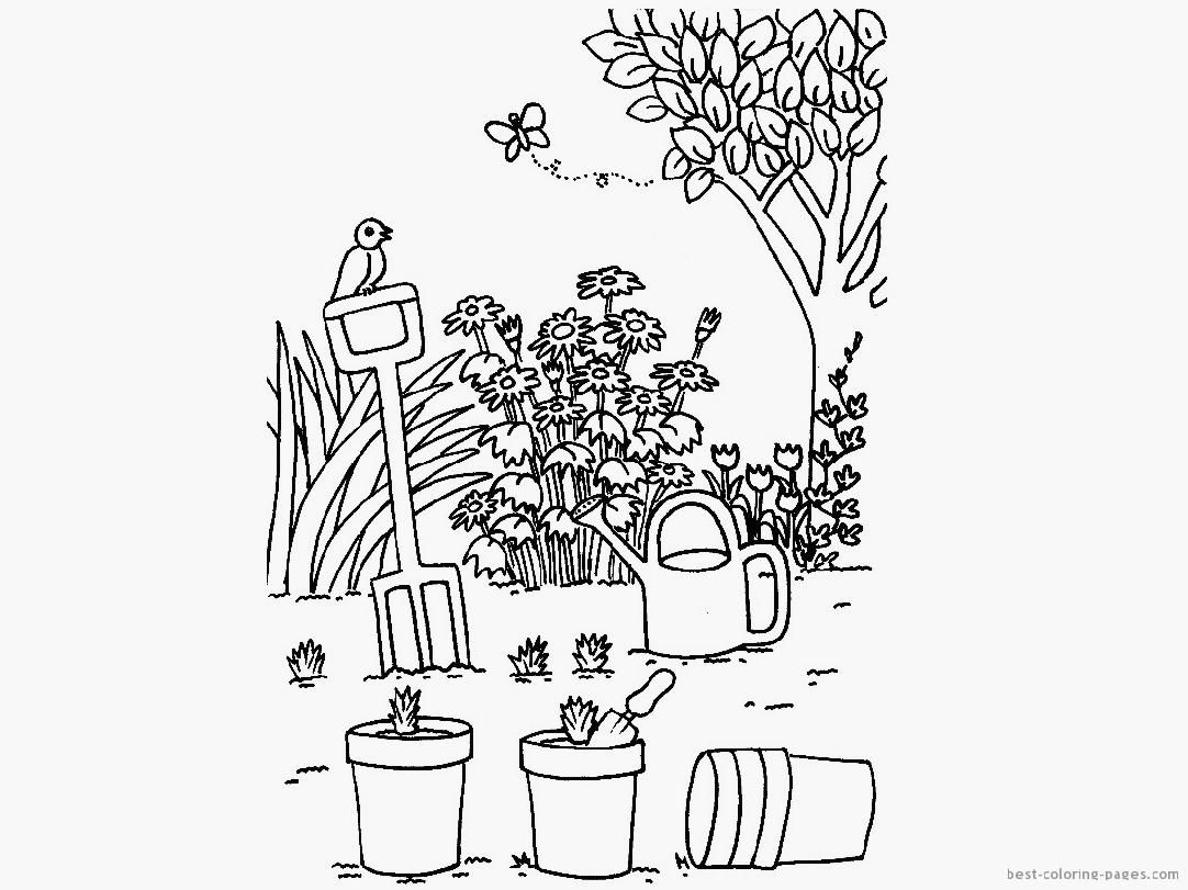 Free coloring pages garden - Coloring Pages Garden Flower Garden Color Pages Coloring Online