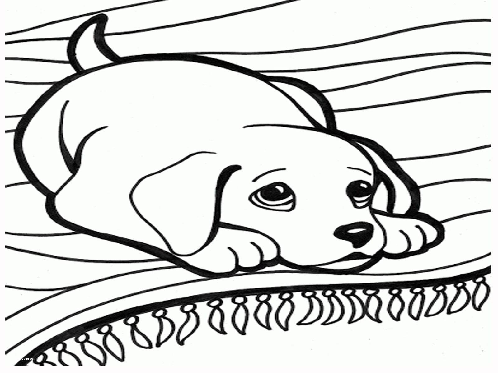 coloring pages : Coloring Pages Extraordinary Colouring Of Dog For Adults  Unique Free Printable Extraordinary Colouring Pages Of Dog ~  mommaonamissioninc