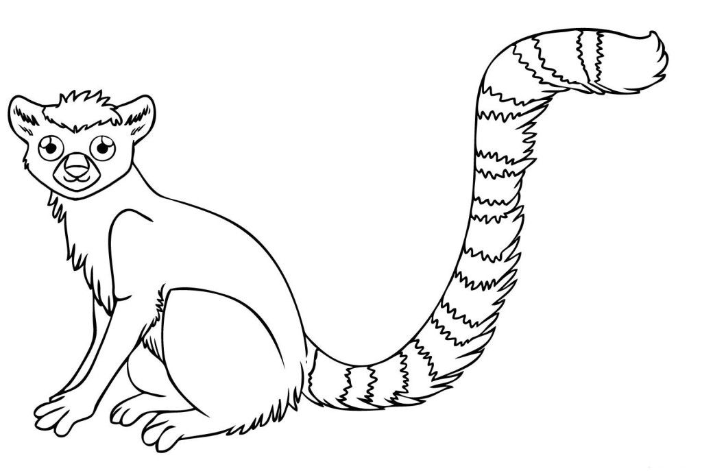 rainforest animal coloring pages - photo#16
