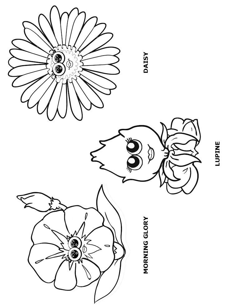 Daisy girl scout coloring page responsible for what i do for Girl scout coloring pages for daisies