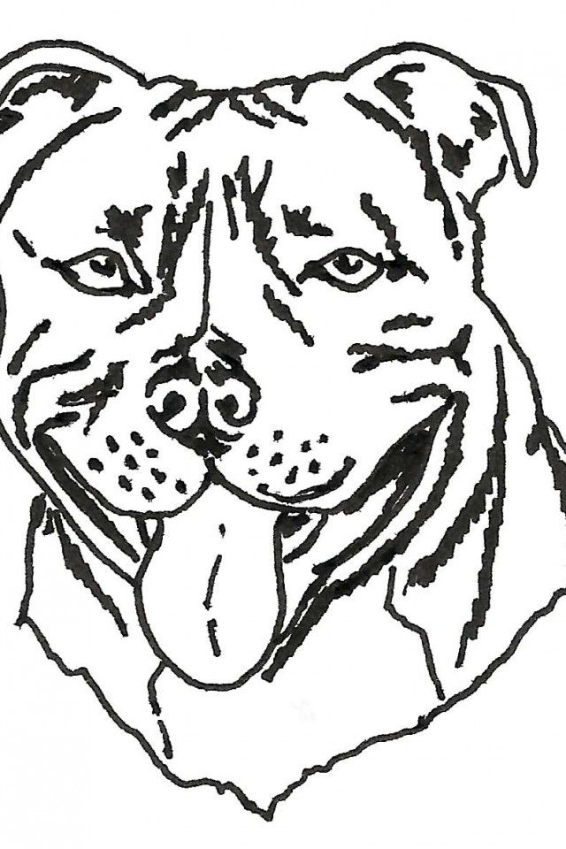 coloring pages of dog breeds - photo#1