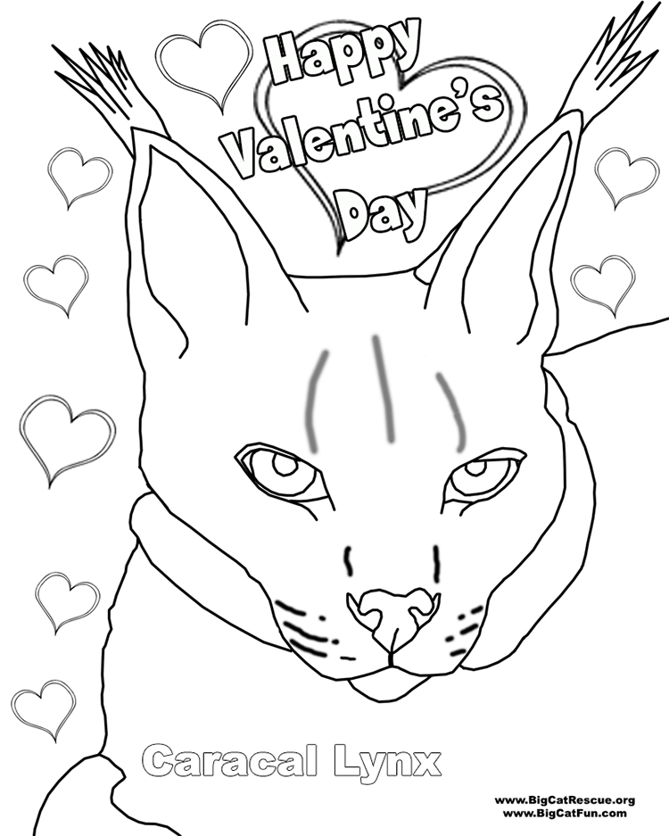 Cat Valentine Coloring Pages Cat Valentine Colouring Pages