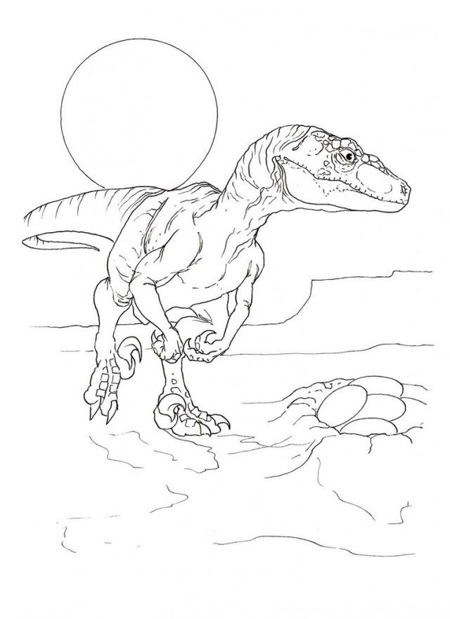 dinosaur coloring pages velociraptor sounds - photo#24