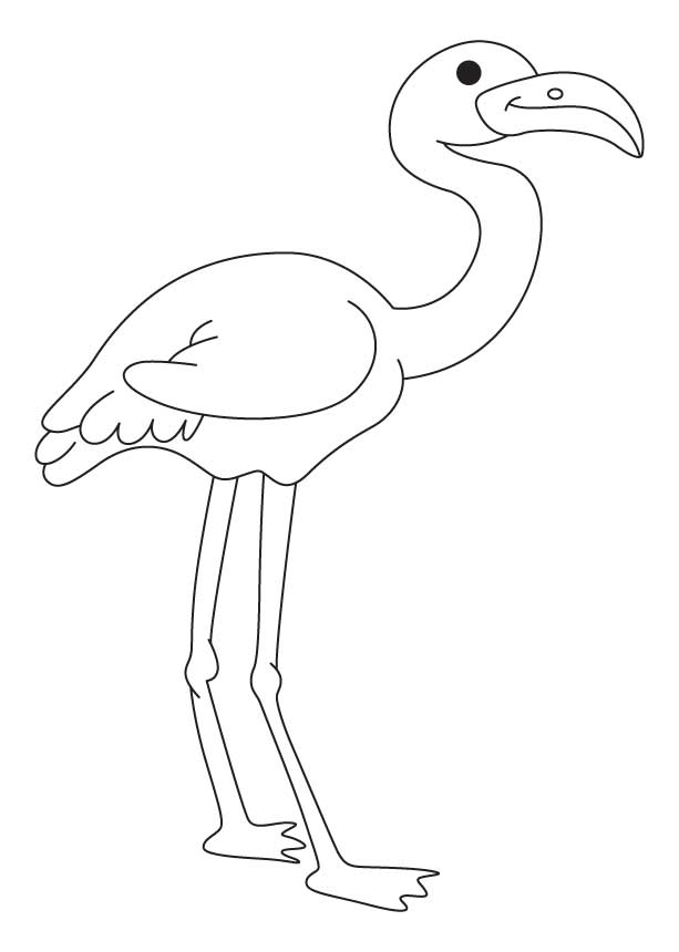 flamingo coloring pages printable free - photo#15