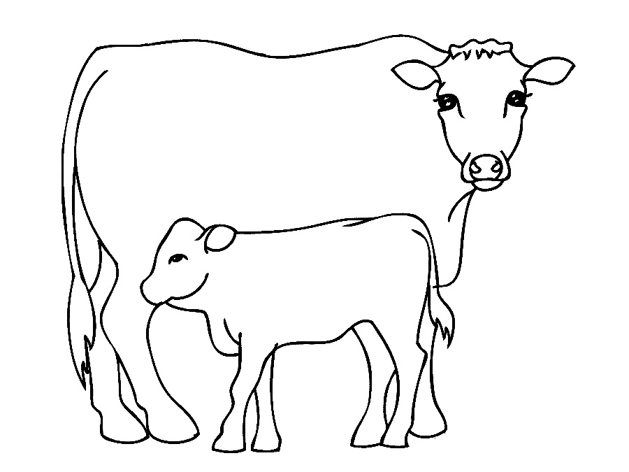 c is for cow coloring pages - photo #44