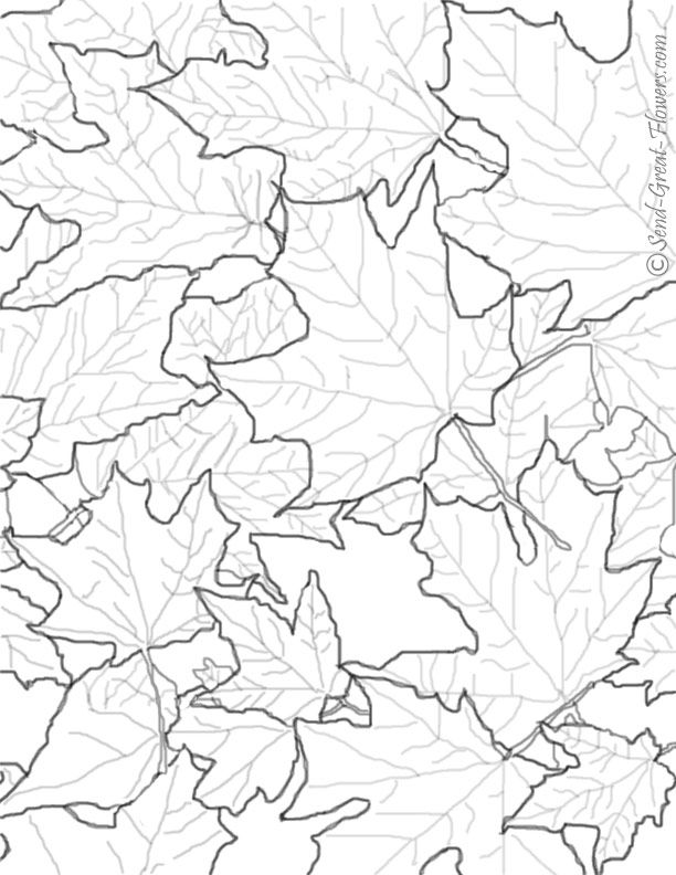 Autumn leaf coloring pages coloring home for Coloring pages autumn leaves