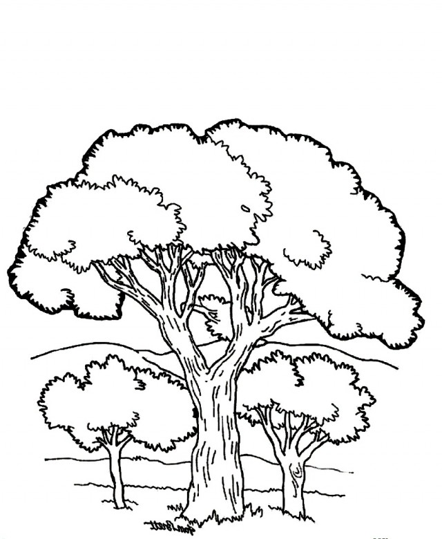 Mountain scene coloring pages coloring pages for Coloring pages mountains