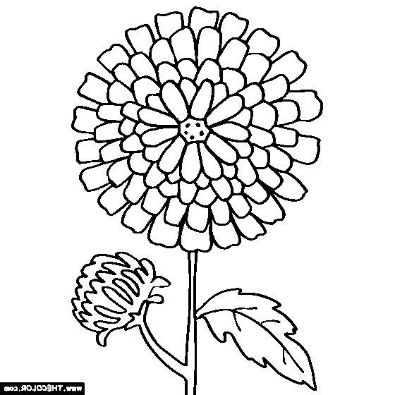 kevin henkes chrysanthemum coloring pages - photo#11