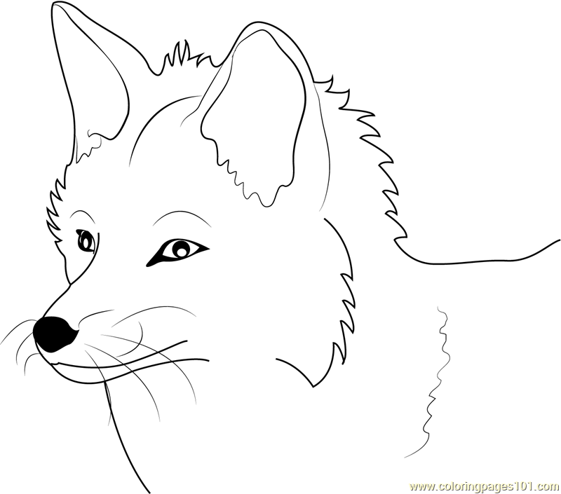 photograph about Fox Printable referred to as Fox Coloring Webpages - 112 Fox Printable Webpages And Coloring