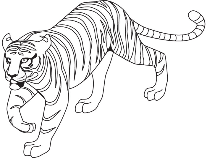 tiger template outline free