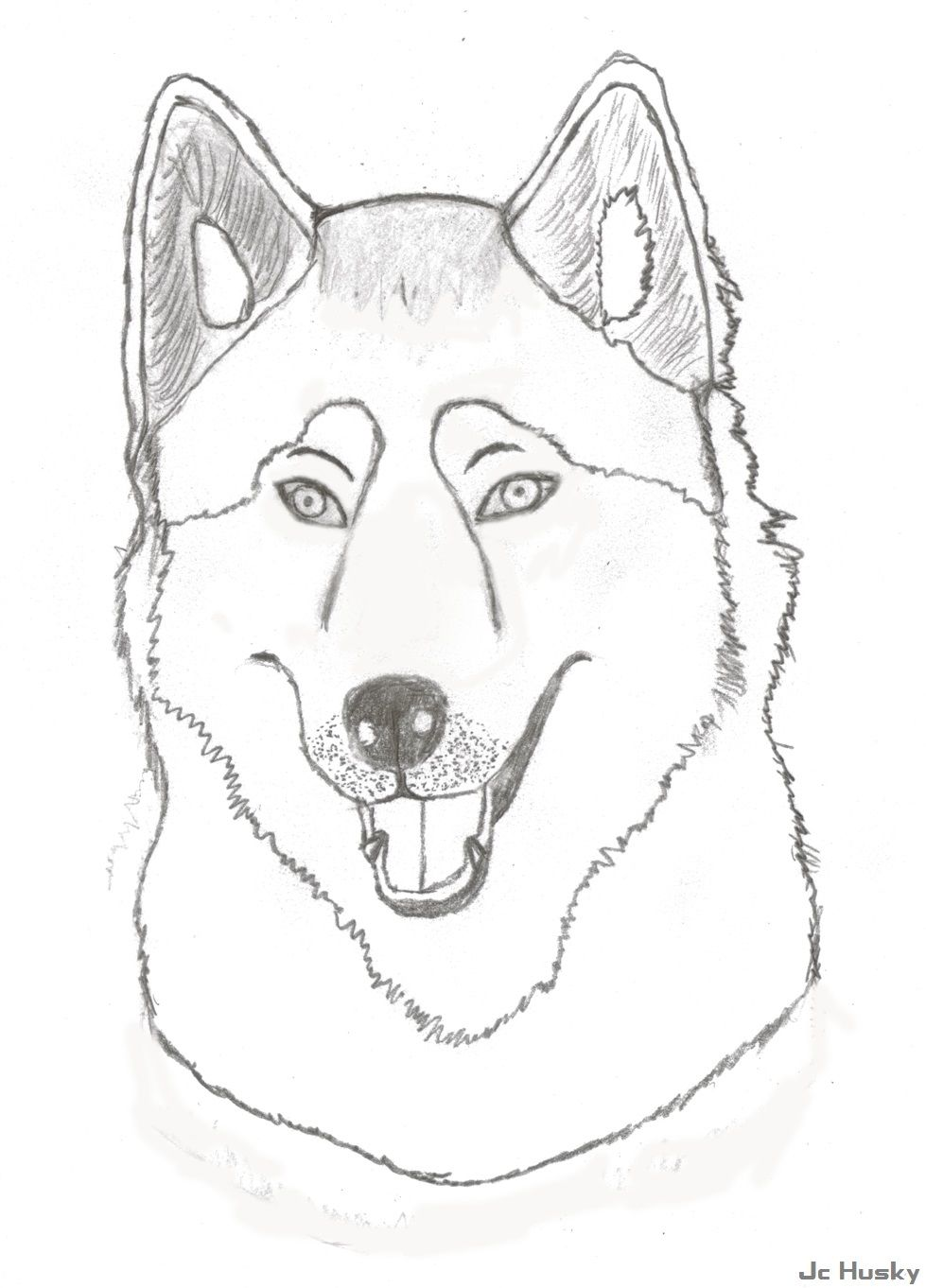 Husky Face Coloring Page - HiColoringPages