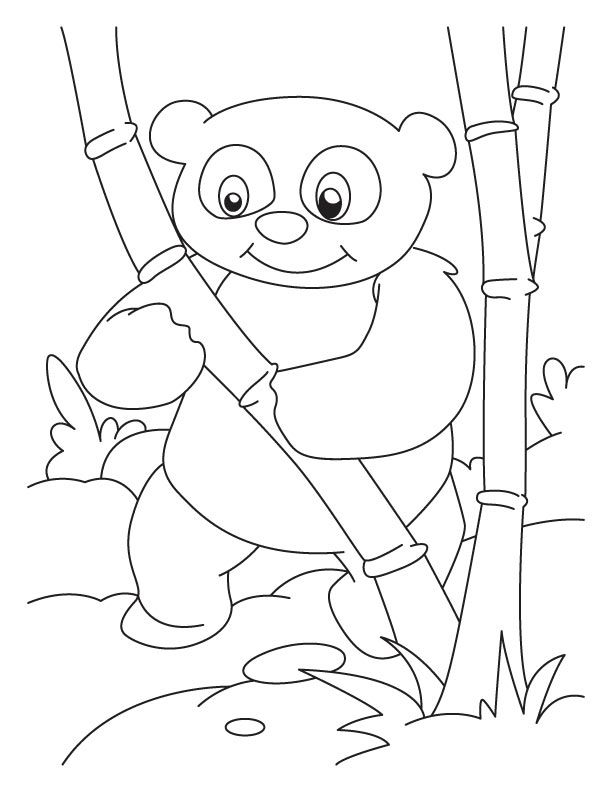 Panda mother baby coloring pages ~ Baby Pandas Coloring Pages - Coloring Home