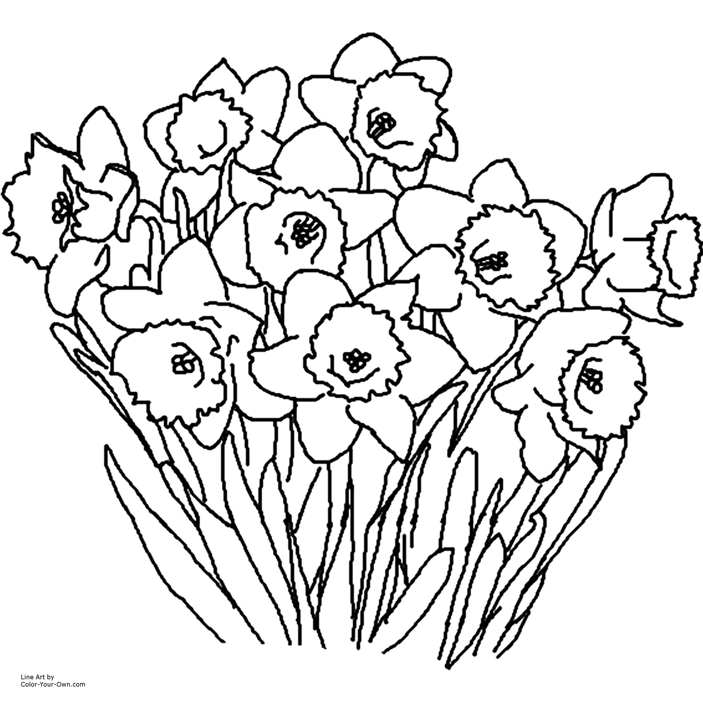 Free Printable Spring Flowers Coloring Pages - Coloring Home
