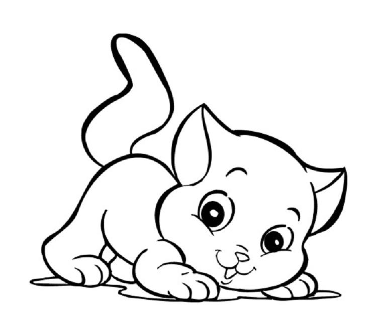 Preschool Kitten Coloring Pages - Fun For Kids