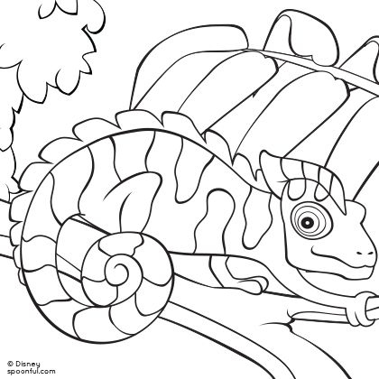 chameleon coloring pages getcoloringpagescom - Chameleon Coloring Pages Printable