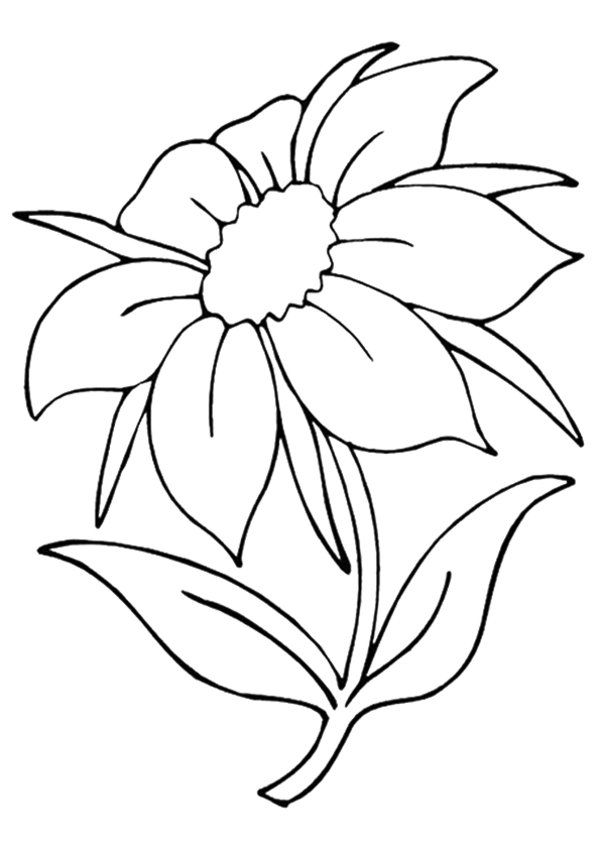 Jasmine flower coloring pages coloring home 12 pics of beautiful flower coloring pages printable beautiful mightylinksfo