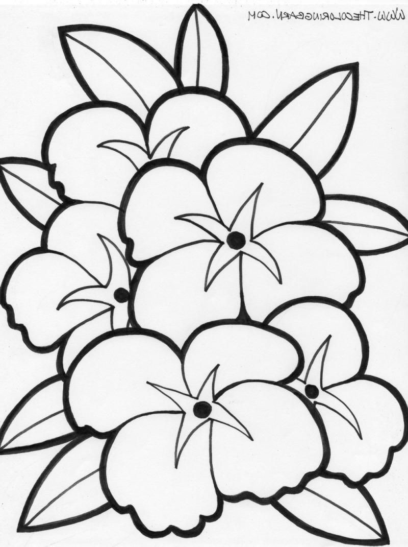 Hawaiian flowers coloring page coloring home free coloring pages of hawaiian flowers coloring online izmirmasajfo Image collections