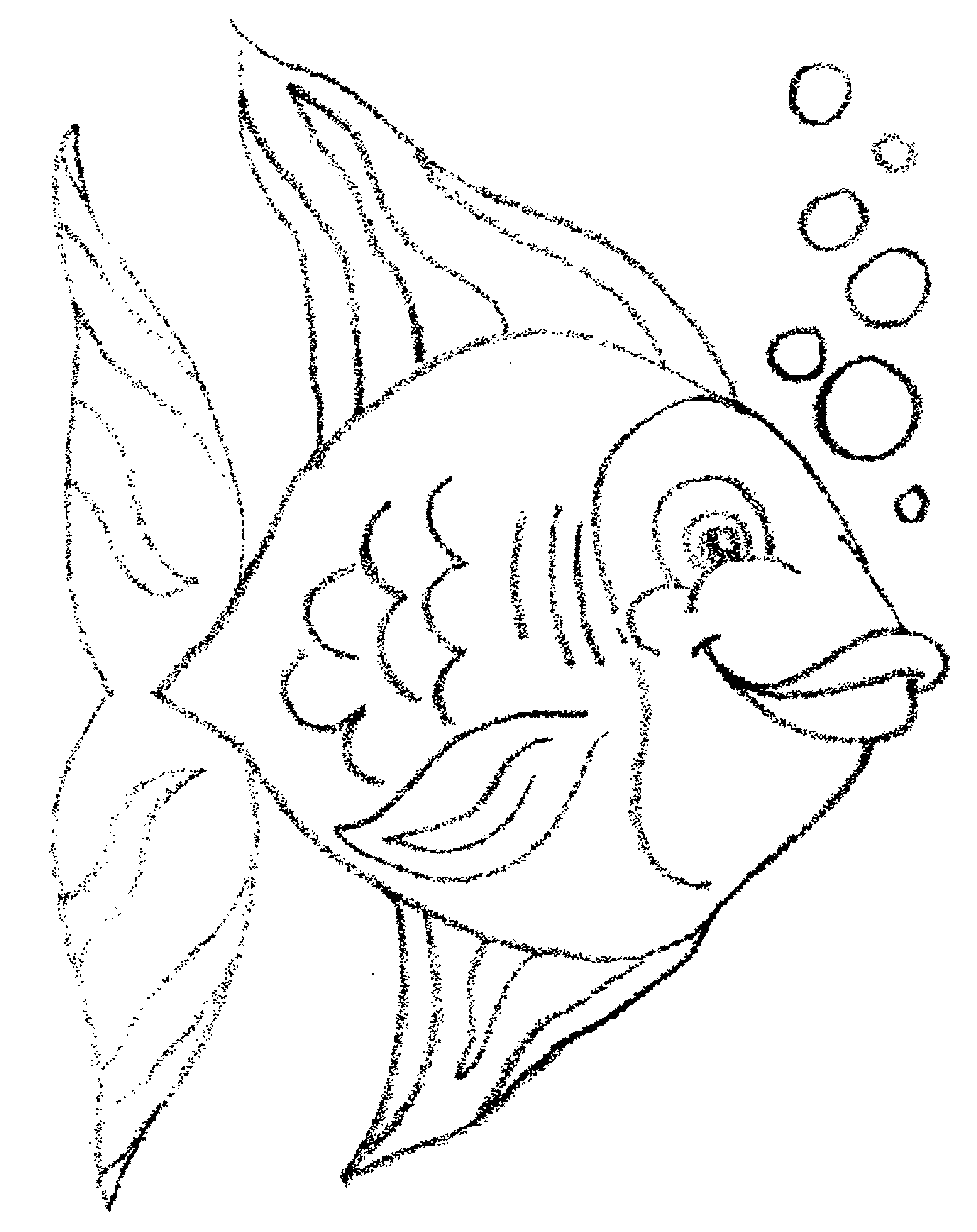 Bass Fish Coloring Pages Printable Kids Colouring Pages