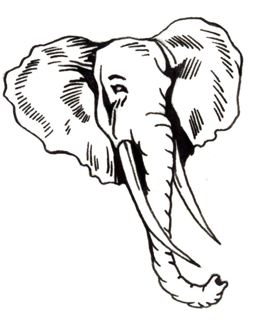 Elephant Face Coloring Page - Coloring Home