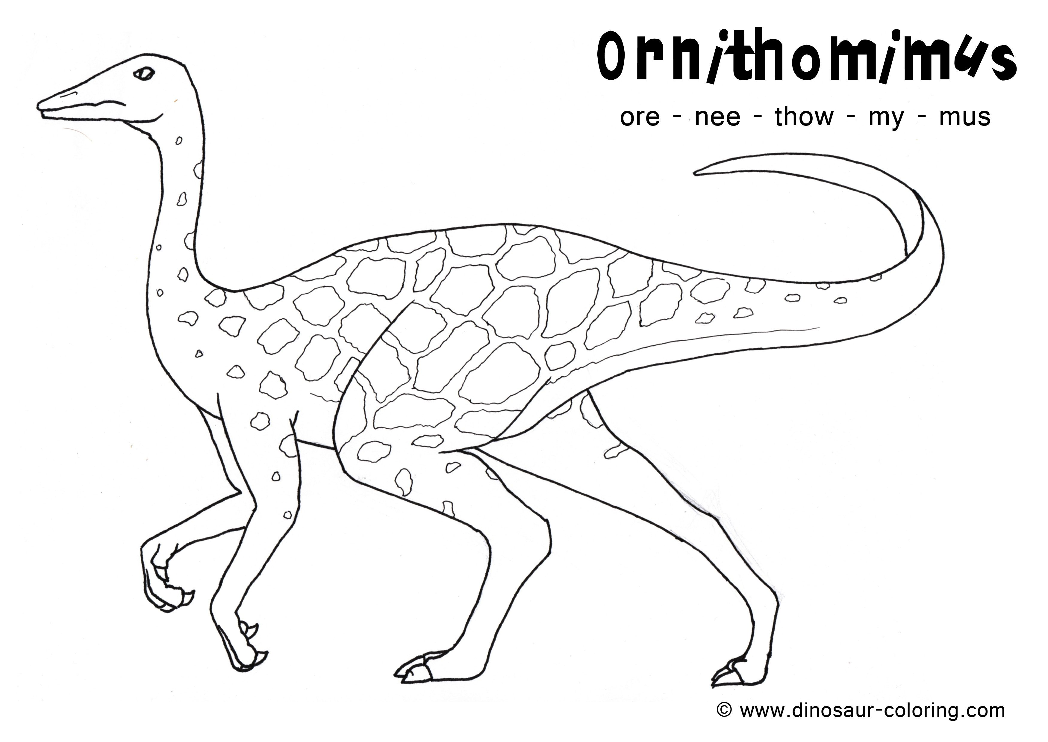 Long Neck Dinosaur Coloring Page Coloring Home