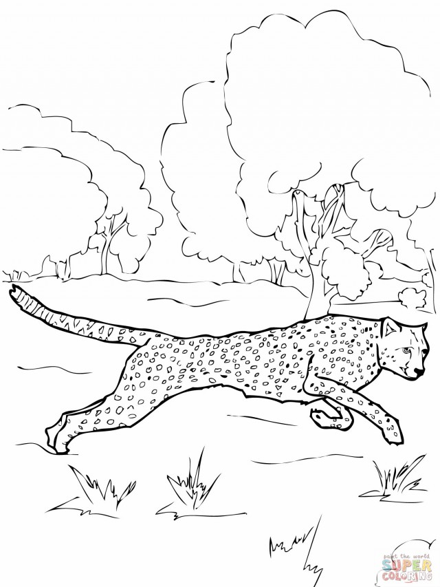 chettah girls coloring pages - photo#23