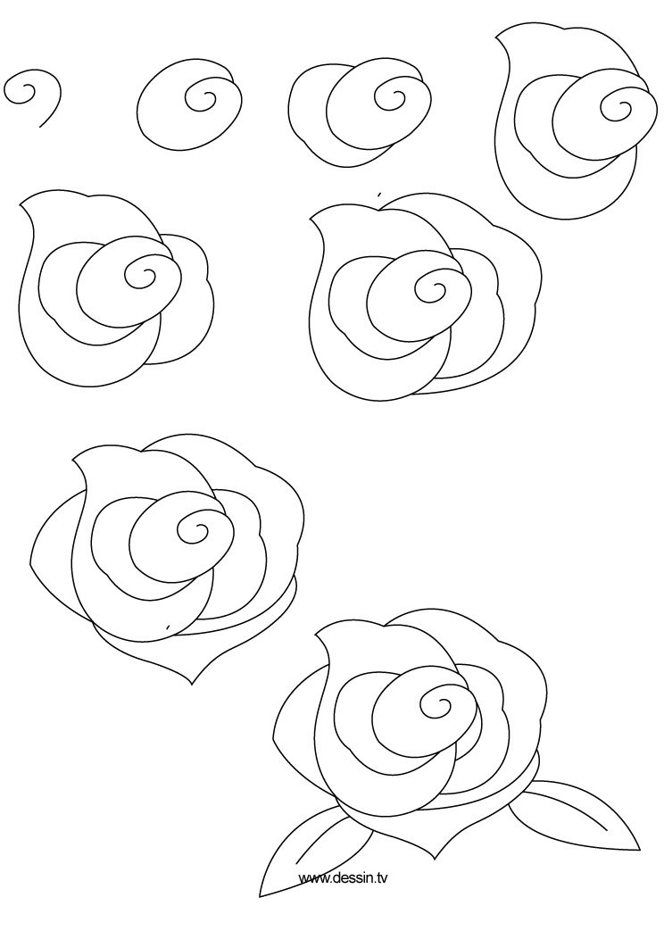 easy rose drawing for kids - photo #19